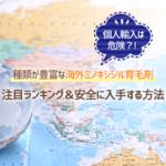 個人輸入は危険?! 種類が豊富な海外ミノキシジル育毛剤 注目ランキング&安全に入手する方法